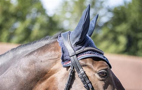 Premier Equine fly veil review | Horse & Hound group test