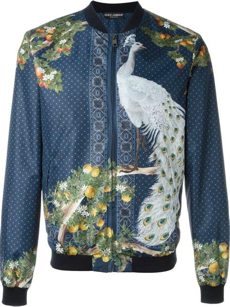 Dolce & gabbana Peacock Print Bomber Jacket in Blue for