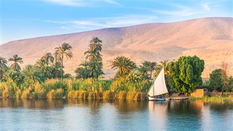 Cruise the Nile in Egypt, enjoy a foodie trip to Andalusia