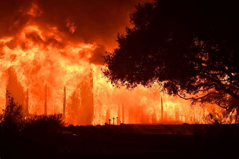 California Fires: Will You Pay More for Wine, Marijuana