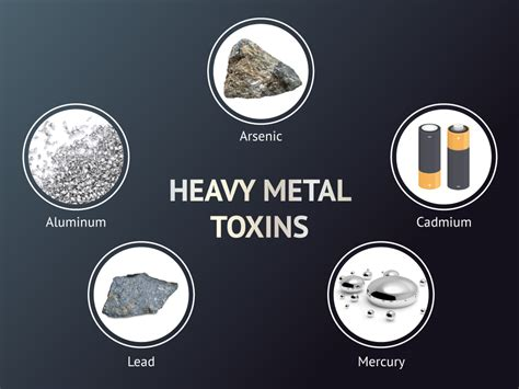 Heavy Metal Toxicity: Dangerous metals and how they shield
