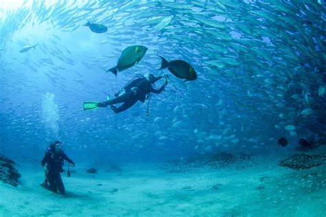 Padi Open Water Course 3 Days