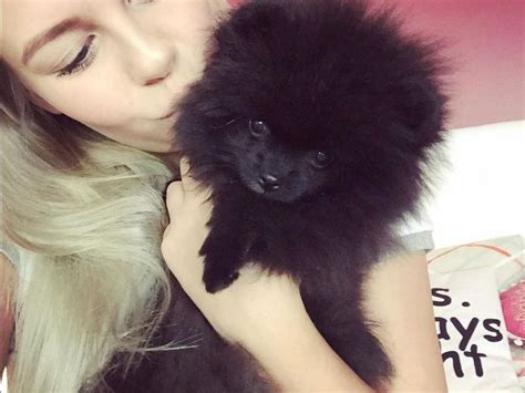 104 best images about Dagi Bee on Pinterest   Surf