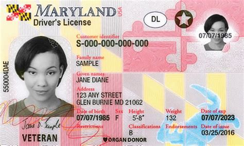 Maryland Driver's License Application and Renewal 2020