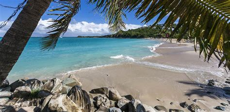 Flights to Saint Martin - Get United's Best Fares Today