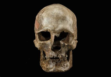 DNA evidence uncovers major upheaval in Europe near end of